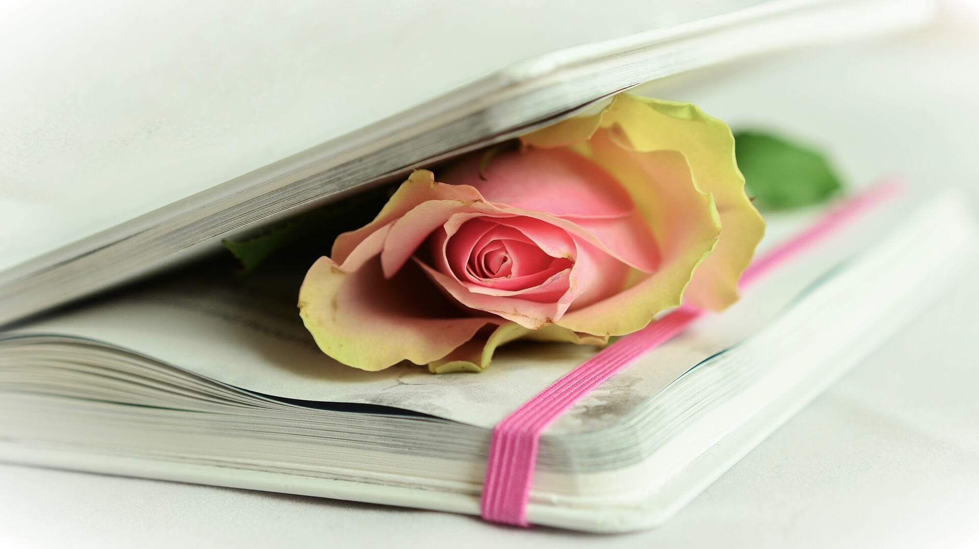 Actividad para clase de ELE: Poesía